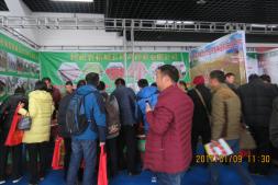 柘城县传奇种业有限公司