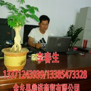 山东金乡鼎诺商贸有限公司 ()