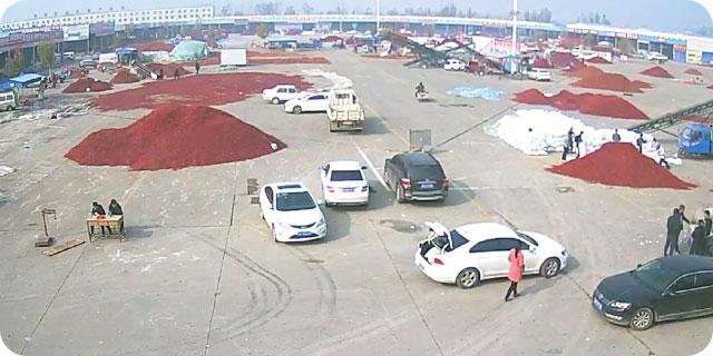 金乡大蒜国际交易市场北区东半部 ()