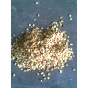 大量求购辣椒籽