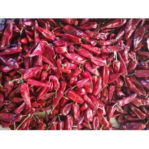 寻求红干椒收购商合作