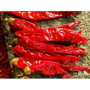 大量出售腌制辣椒
