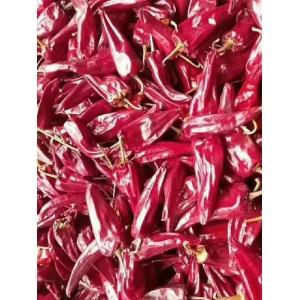 产区大量出售北京红干辣椒