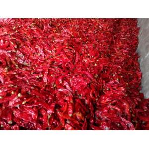 腌制红辣椒