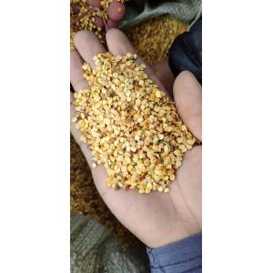 红龙辣椒籽