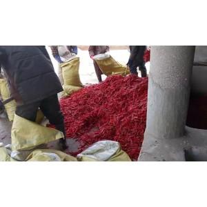 本公司出售腌制红软皮椒