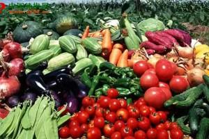 农产品电商大战开启