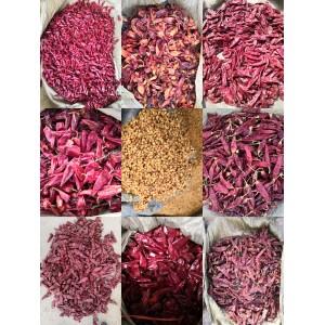 供应各个产地带把去把剪把 好货花皮 印度椒 辣椒籽等等
