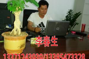 山东金乡鼎诺商贸有限公司