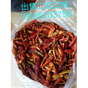 供应干辣椒二红、二黄、花皮