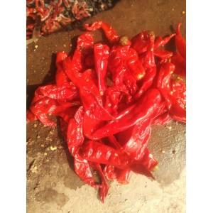 天津腌制六寸红出售