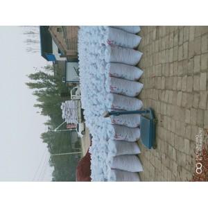河南开封通许三樱椒产地市场