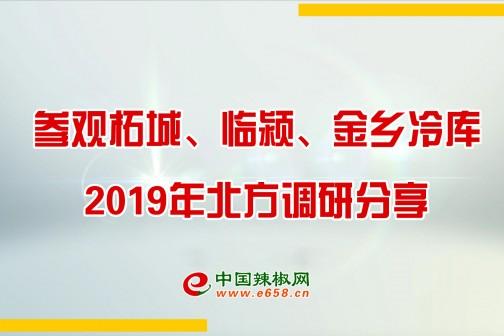 参观柘城、临颍、金乡冷库--中国辣椒网2019年北方调研分享 ()