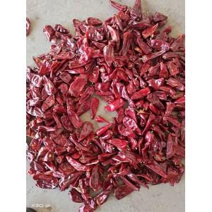 低价出售优质北京红