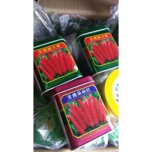 三鹰朝天椒种子,高辣,改良,杂交种