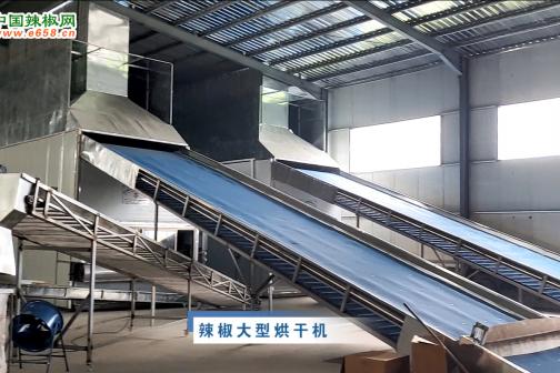 2020年7月中国辣椒网产区调研-大型烘干机篇 ()