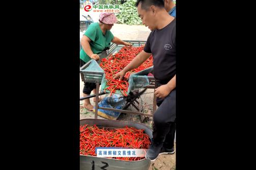 2020年7月中国辣椒网产区调研-鲜椒交易篇 ()