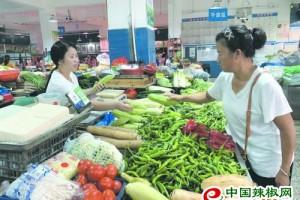 益阳:菜价季节性波动