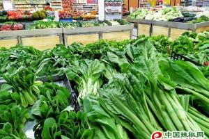 江苏:七成蔬菜价格上涨