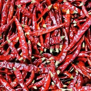 长期求购各品种干辣椒