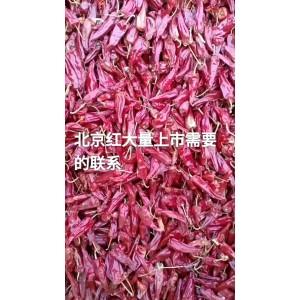 北京红二荆条干度好价格便宜