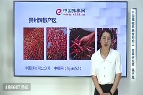 贵州和云南特色辣椒产区介绍 ()