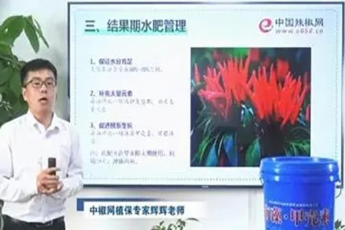 辣椒高产种植技术讲座 ()