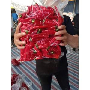 大量供应剁辣椒和泡椒