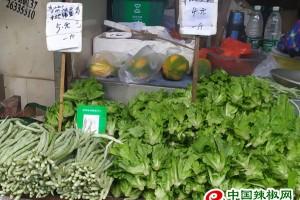 广州降温,菜价上涨